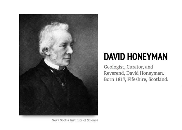 Honeyman Timeline Title Page